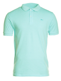 Polo-Turquoise-face.jpg